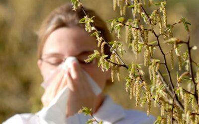 Frühjahrs – Pollenallergie auf Chinesisch